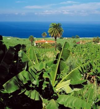 La Isla lanza su campaña promocional de verano en la Península