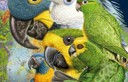 Loro Parque Fundación celebra en septiembre su  IX Congreso Internacional de Papagayos