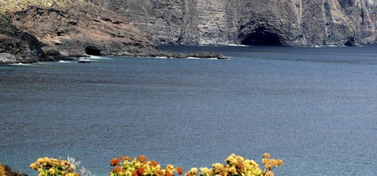 Tenerife participa en una consulta nacional sobre las zonas especiales de conservación marítima