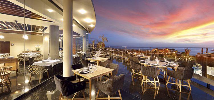 Hard Rock Hotel Tenerife recupera su servicio exclusivo «Animal Instinct» para las mascotas de sus clientes