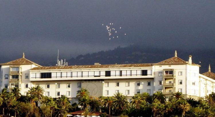 El Cabildo formaliza el contrato con la empresa adjudicataria de la explotación del Hotel Taoro