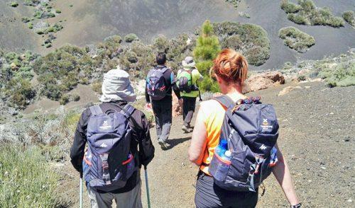 La Isla promociona el Tenerife Walking Festival entre turoperadores, agentes y periodistas