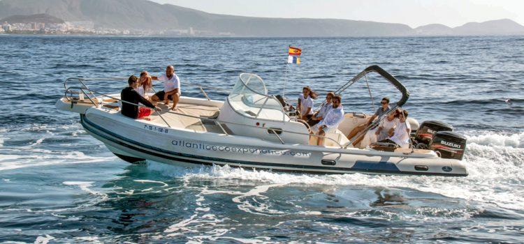 Atlantic Eco Diving y Atlantic Eco Experience, dos empresas tinerfeñas que velan por el medio ambiente marino