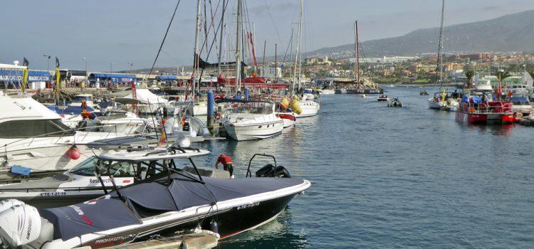 La Comisión Ballenera Internacional publica un estudio sobre el avistamiento de cetáceos en la Isla