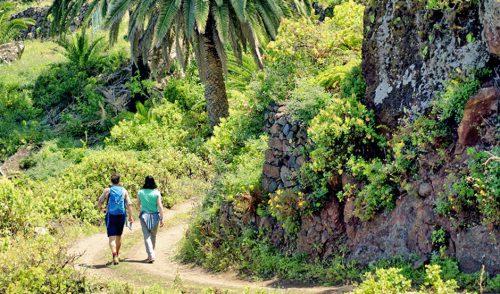 Periodistas y operadores de Reino Unido e Irlanda asisten en la Isla al lanzamiento de la marca de senderismo CanariasWays.com