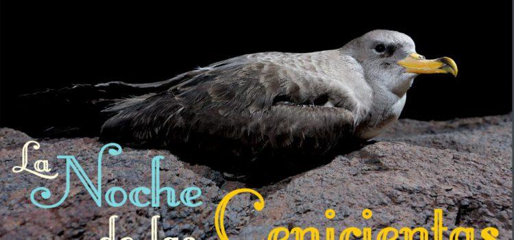 Turismo de Tenerife se une a la campaña 'La Noche de las Cenicientas'