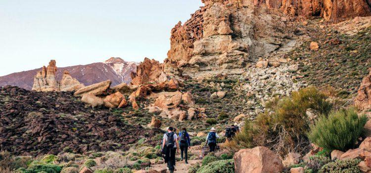 El Cardón NaturExperience lanza el producto de aventura y naturaleza Latitud Tenerife