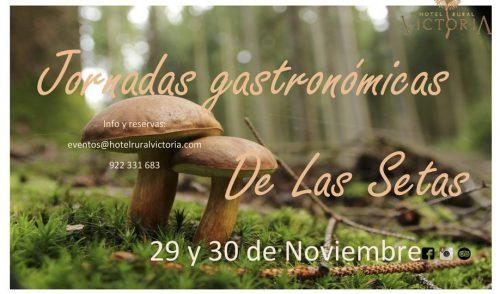 El Hotel Rural Victoria celebrará unas jornadas gastronómicas dedicadas a la seta