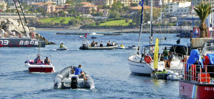 Empresas de la Carta por la Sostenibilidad para el Avistamiento de Cetáceos colaboran con las unidades de vigilancia