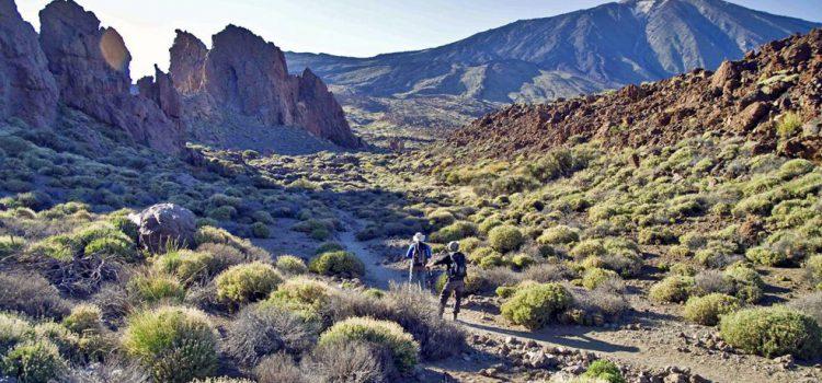 La campaña de Turismo de Tenerife para adelantarse al Brexit alcanza a 13 millones de británicos
