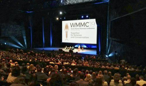 Tenerife presenta la Carta por la Sostenibilidad del Avistamiento de Cetáceos en la Conferencia Mundial de Mamíferos Marinos