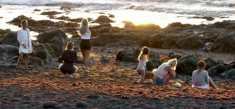 Tenerife apuesta por atraer al turista más joven