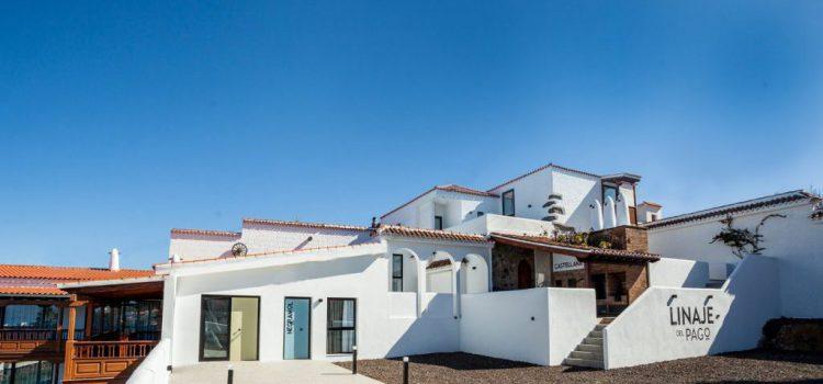 Bodega Linaje del Pago, primer alojamiento enoturístico de Canarias