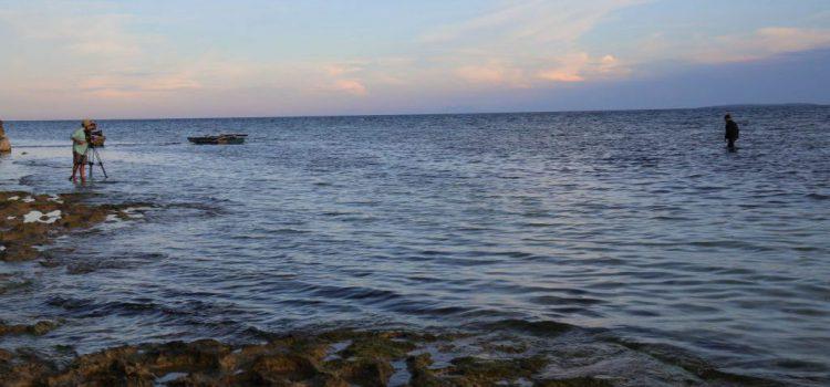 El cine de Cameron y National Geographic alerta en `Arona SOS Atlántico´ sobre el impacto del cambio climático en la vida de los mares