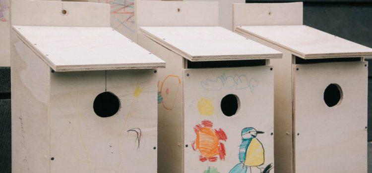 Cajas nido para compensar emisiones