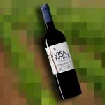 Viña Norte -Mejor vino Joven 2011