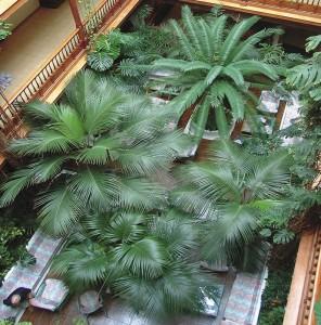 Hotel Monopol Tenerife