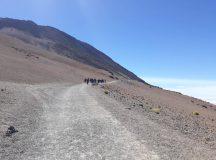 Evento Senderismo Tenerife