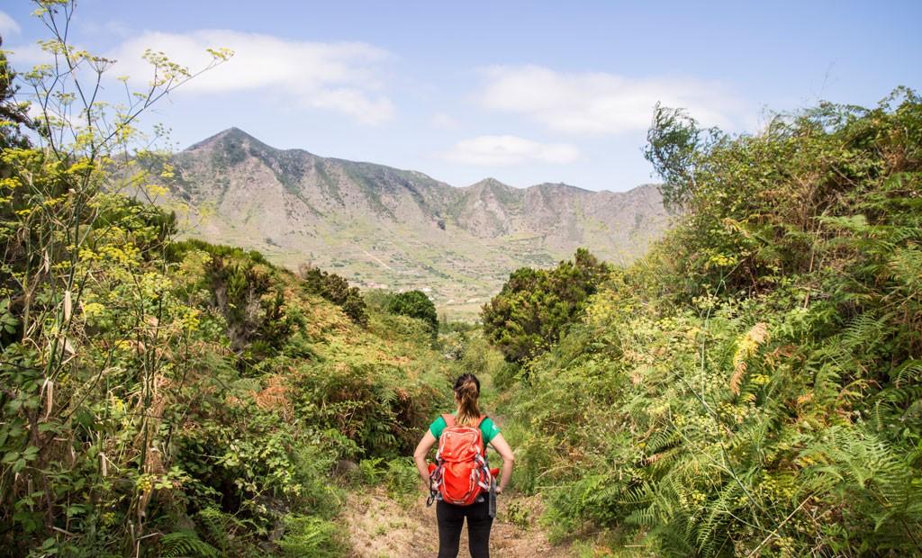 Senderismo en Tenerife para novatos, guía rápida.