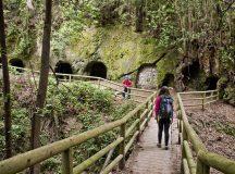 Que necesitas para hacer senderismo en Tenerife