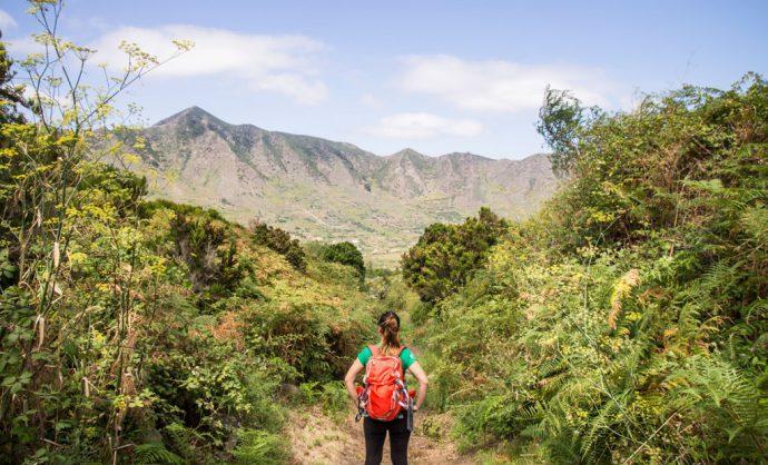 Monte del Agua Tenerife