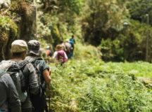 Tenerife Walking Festival: ejemplo de evento sostenible para Europa